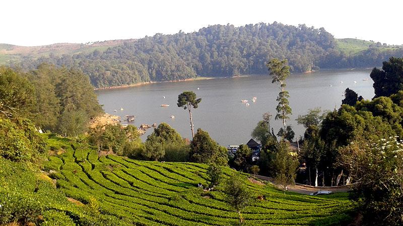 Tempat Wisata di Bandung - Situ Patenggang