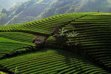 30 Tempat Wisata di Kuningan dan Majalengka Terindah 2020